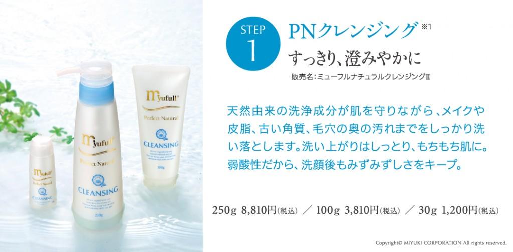 PN_Image_cleansing